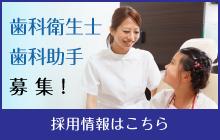 歯科衛生士・歯科助手募集!採用情報はこちら